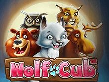 Играть в Wolf Cub онлайн